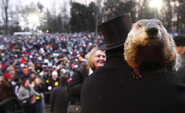 It's Groundhog Day: Are You Making These Mobile Marketing Automation Mistakes Over and Over Again?